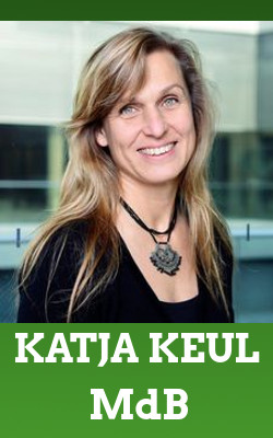 Grüne Vertreter*Innen: Katja Keul