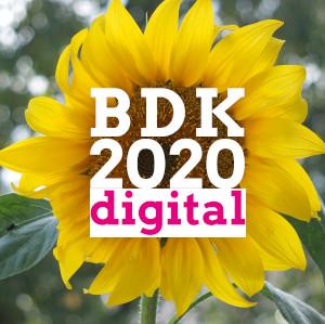 BDK-2020