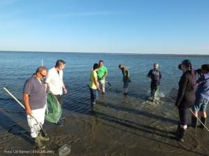 Aktionstag-gegen-Vermuellung-der-Meere 2016-08-17 009